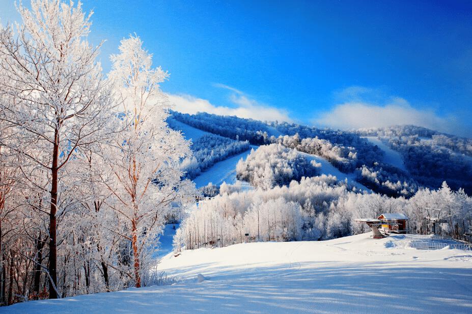 全国中高风险地区清零,抓住冬天的尾巴去滑雪!