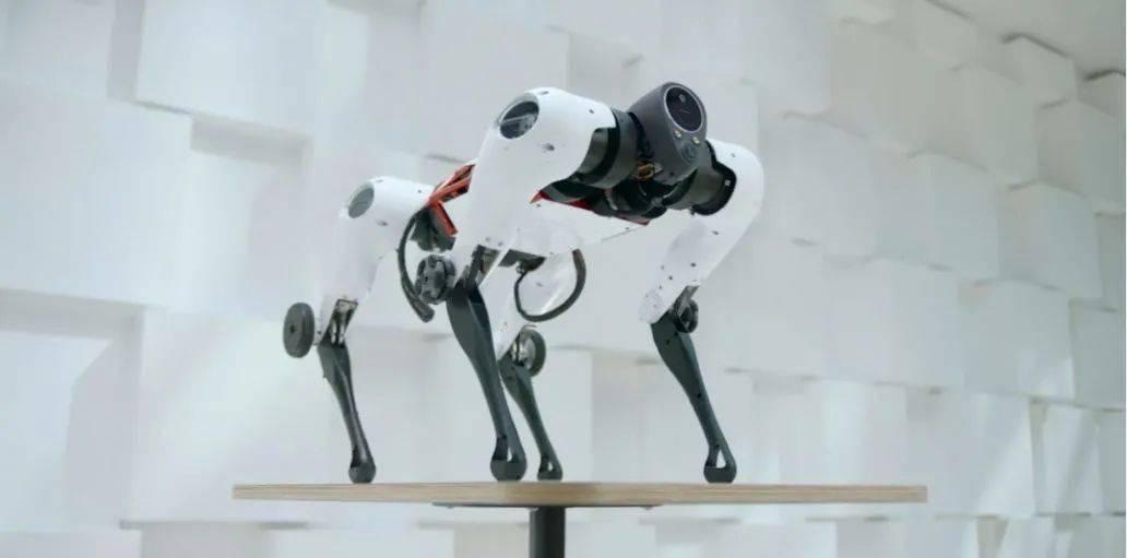 大疆发布沉浸式飞行无人机 / 腾讯发布全自研机器狗 Max / 苹果美国门店全部恢复营业