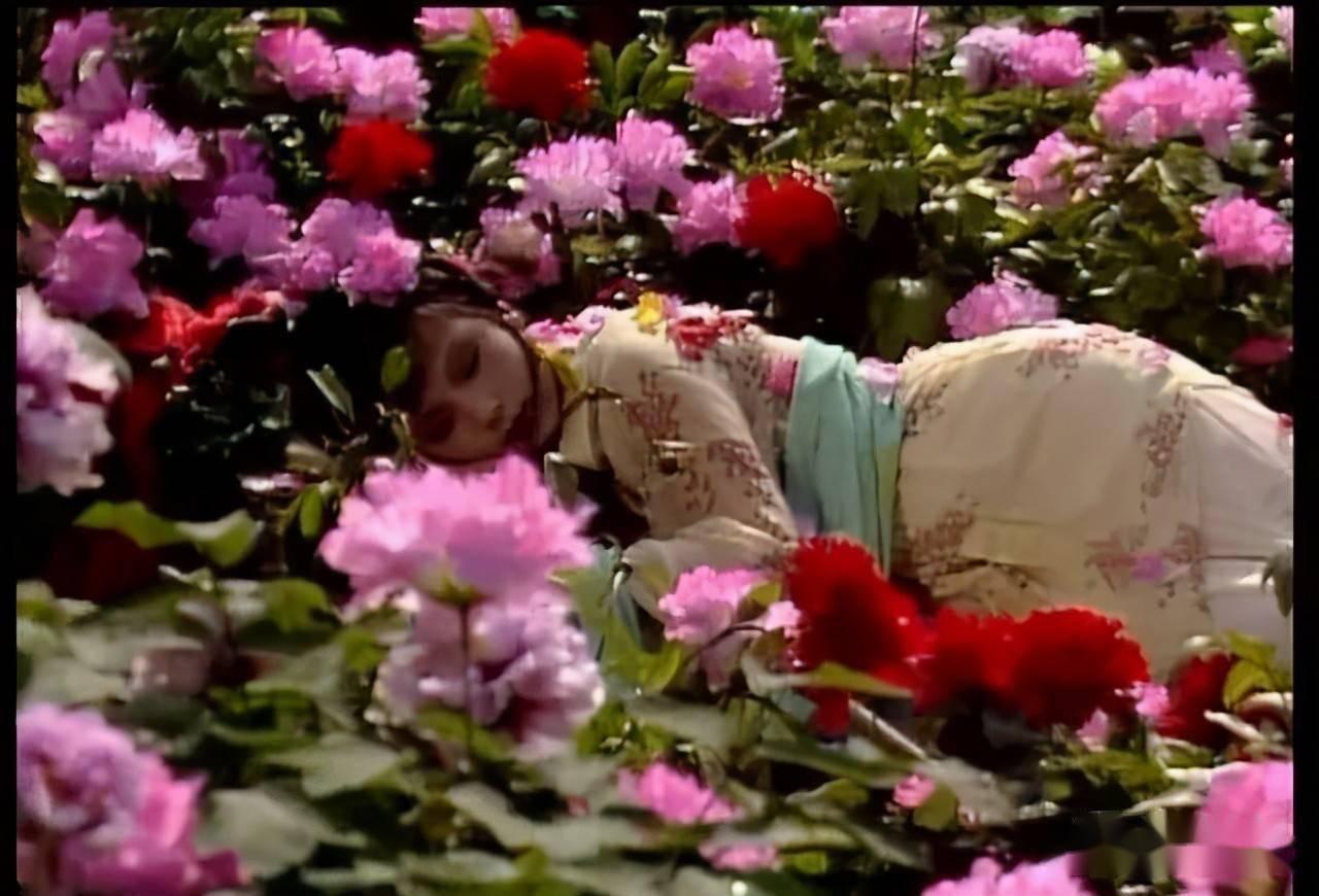樱花动漫:不同的花有不同的花语,同是芍药,不同的文人从中悟出了不同的道 网络快讯 第4张
