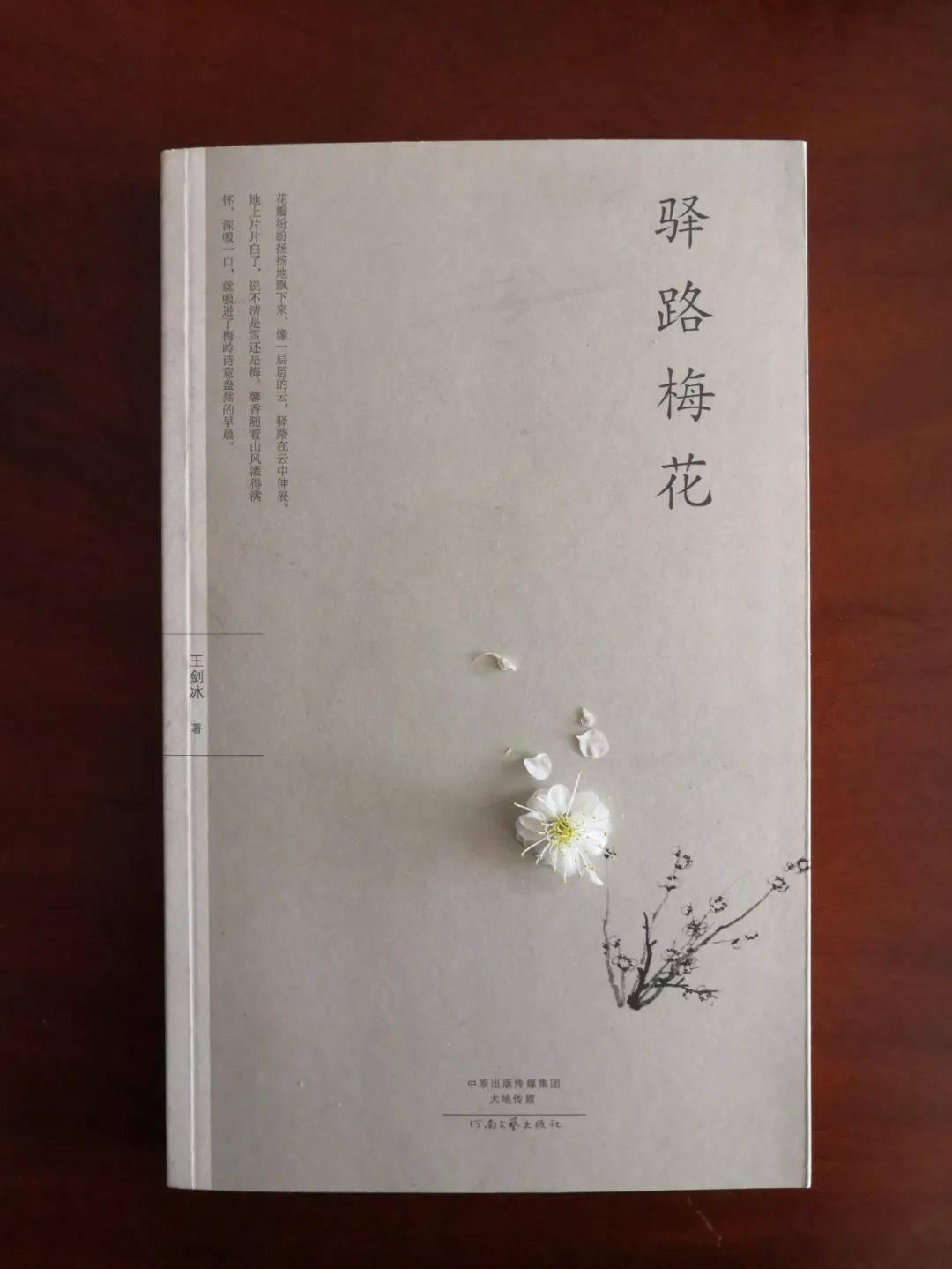 樱花动漫:读王剑冰先生的《驿路梅花》 网络快讯 第2张