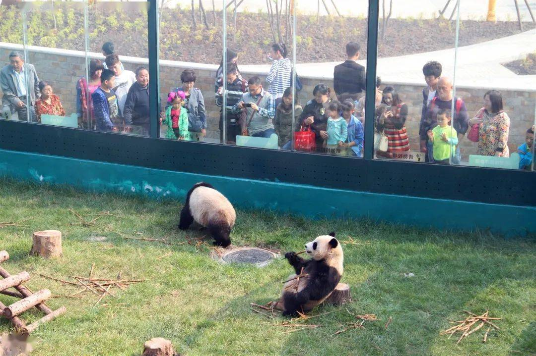 又被挤爆了!天津惊现3000000㎡「度假胜地」!内部实景全面曝光!温泉酒店、动物园、采摘园…现场全是人人人人人人…