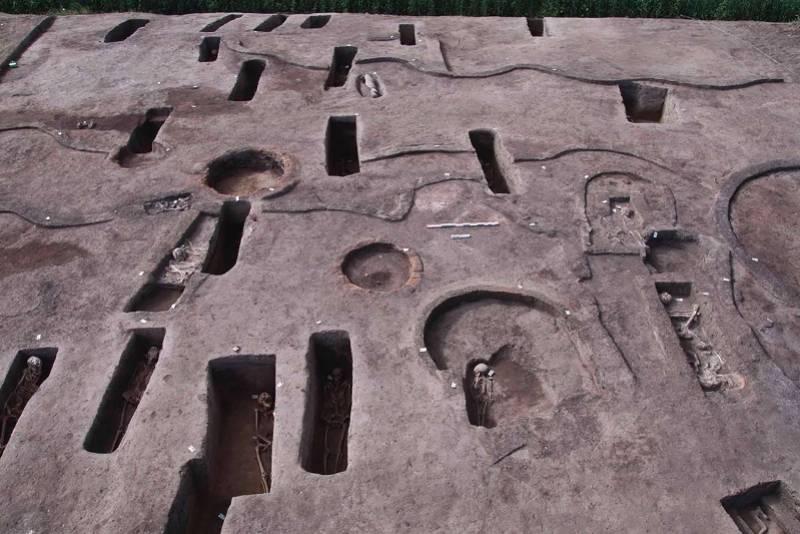 埃及挖出110座古墓,最远距今8000年,发现人类遗骸