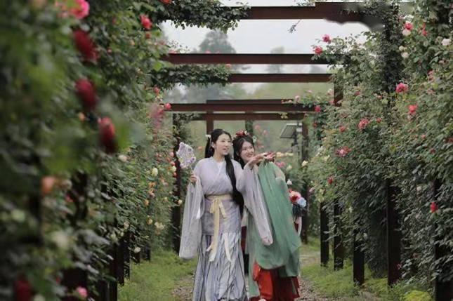 """向美妆进发!湖州举办""""国际玫瑰文化节"""""""