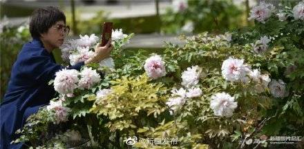 天顺app首页-首页【1.1.0】  第2张