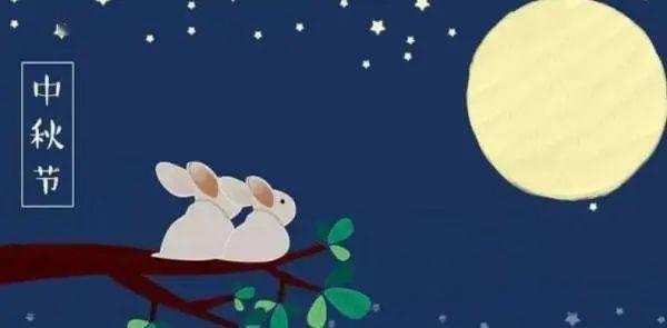 今宵秋月圆,松影映照榻榻米