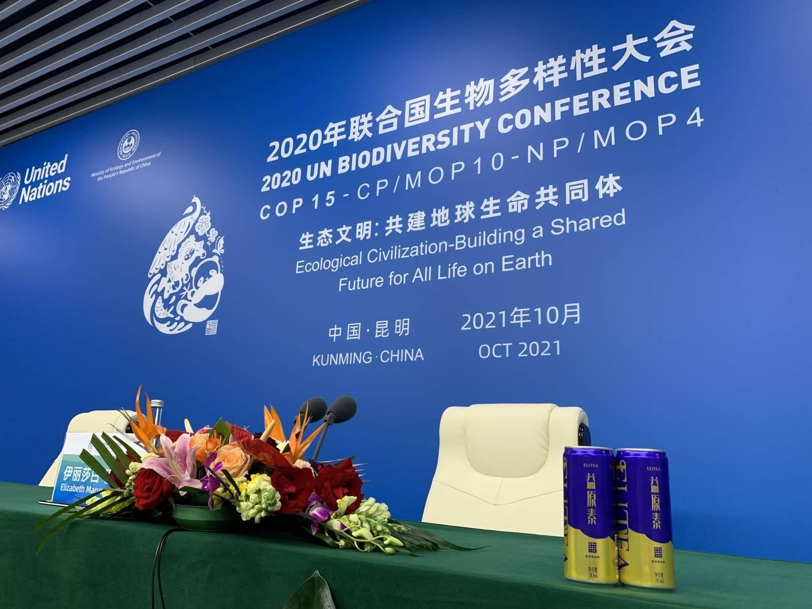 服务COP15大会 四海嘉宾纷纷点赞大益茶
